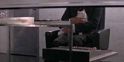 blofeld and cat